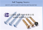 TAPPING SCREWS    DIN7981,din7982.din7972,din7973